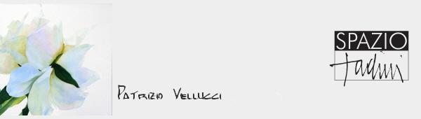Spazio Tadini Patrizio Vellucci